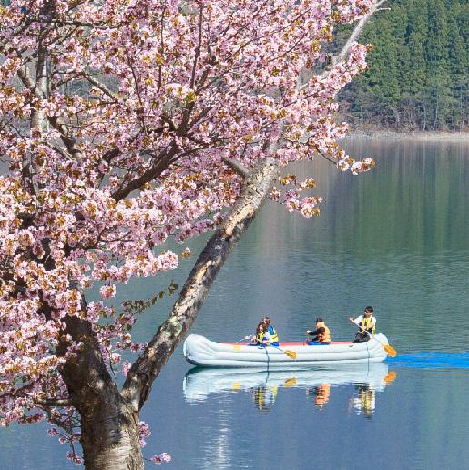 春Eボートクルーズショートツアー