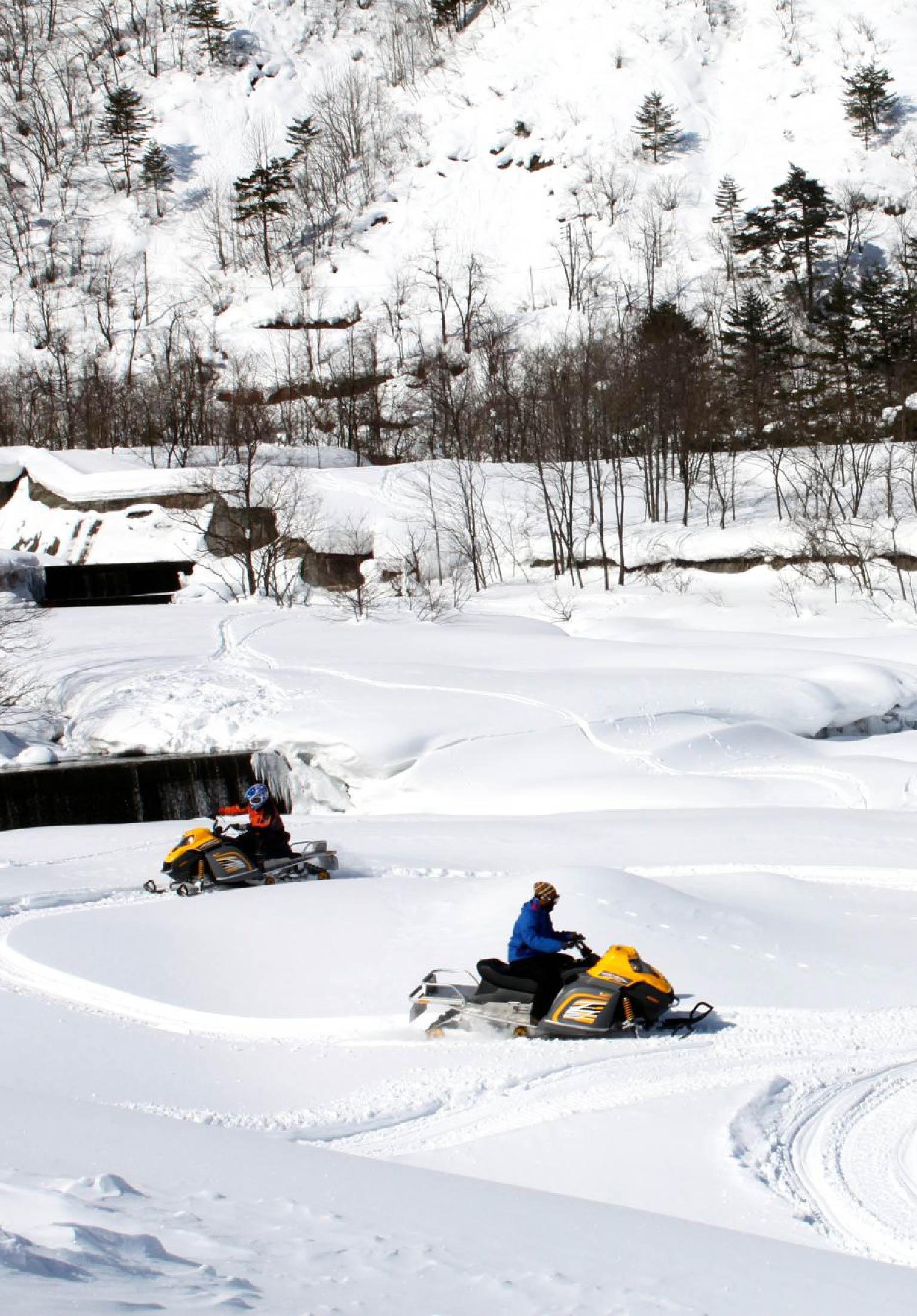 Hakuba Lion Adventure Snowmobile