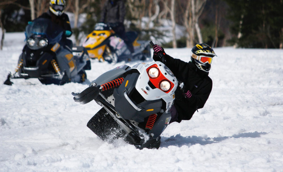Snowmobile Tour in Hakuba