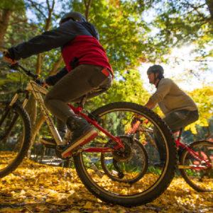 Autumn MTB Fun-ride