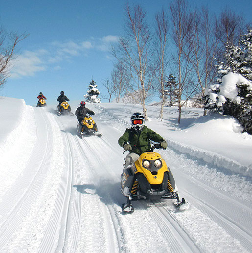 Snowmobile Tour in Shiga Kogen