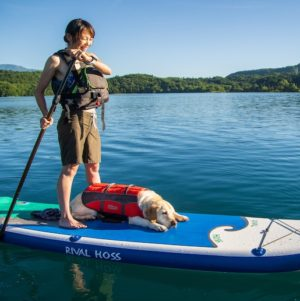 Dog & SUP Hire