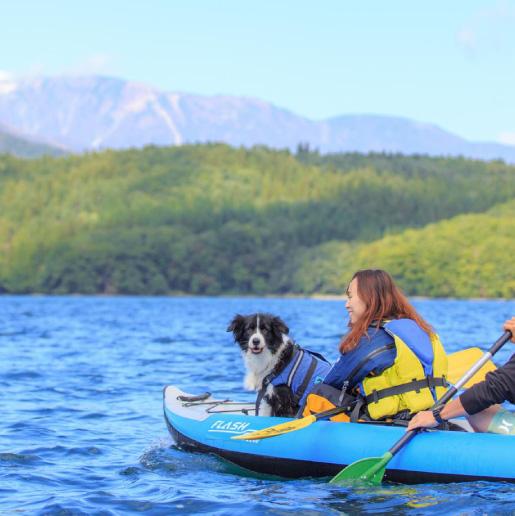Dog and Air Canoe