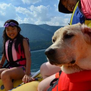 Dog & Raft Picnic